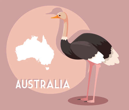 ostrich with map of australia in the background vector illustration design