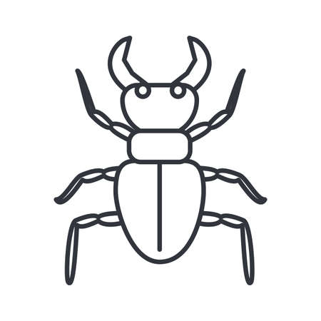 beetle deer icon over white background, line detail style, vector illustration