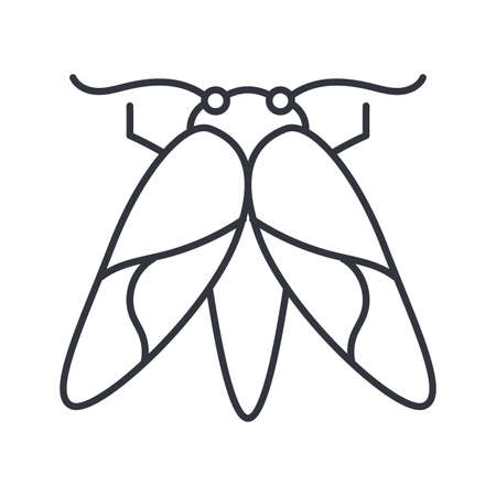 moth insect over white background, line detail style icon, vector illustration