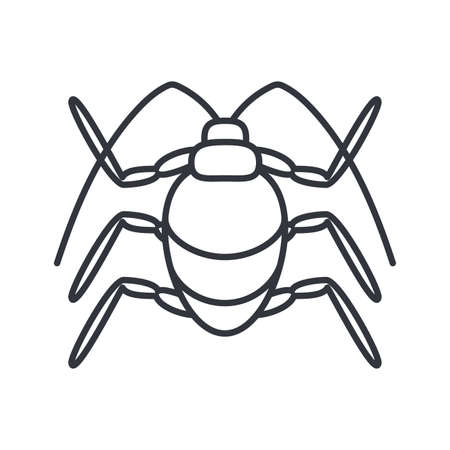 stink beetle insect icon over white background, line detail style, vector illustration