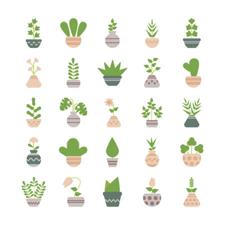 set of icons houseplants with potted vector illustration design