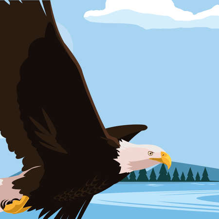 beautiful bald eagle flying in the lake scene vector illustration design Vectores