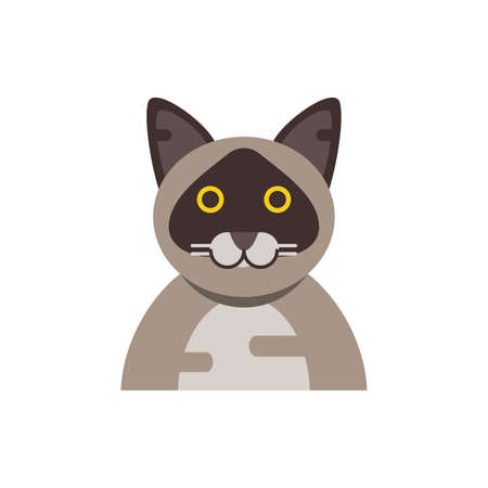Cute light brown cat cartoon design, Animal pet kitten domestic feline kitty mammal beautiful and portrait theme Vector illustration