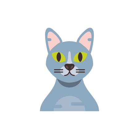 Cute grey cat cartoon design, Animal pet kitten domestic feline kitty mammal beautiful and portrait theme Vector illustration