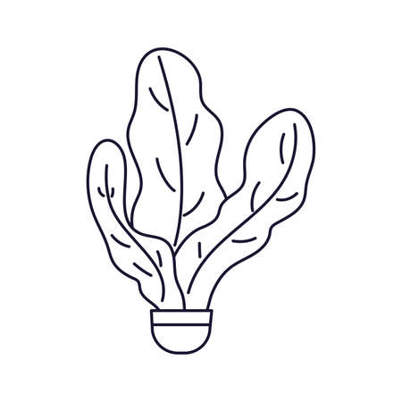 houseplant with potted, line style icon vector illustration design
