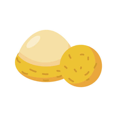 lychee fruit icon over white background, flat detail style, vector illustration