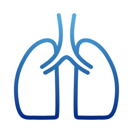 human lungs, human internal organ, respiratory system, degraded line style icon vector illustration design