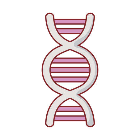 Dna structure flat style icon design, Chromosome science molecule genetic biology medical cell medicine and research theme Vector illustration