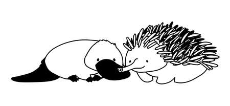platypus and echidna on white background vector illustration design Ilustração