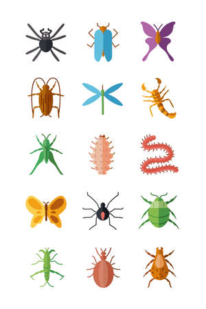 spiders and insects icon set over white background, flat style, vector illustration