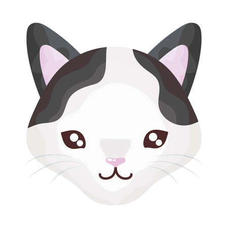head of cute cat on white background, feline domestic vector illustration design