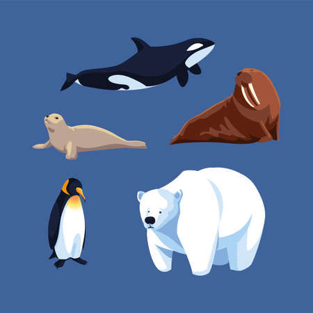 set of arctic animals in a blue background vector illustration design