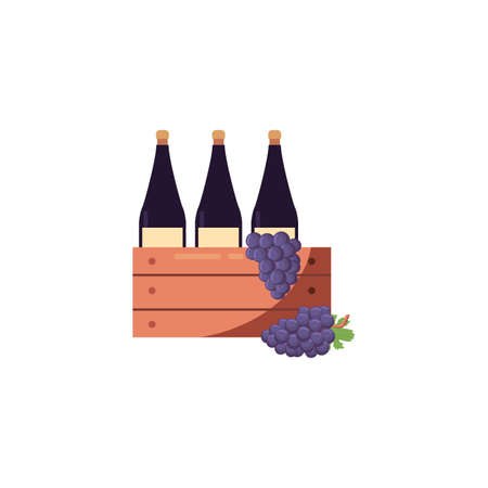 Wine bottles inside box and grapes design of Winery alcohol drink beverage restaurant celebration and party theme Vector illustration