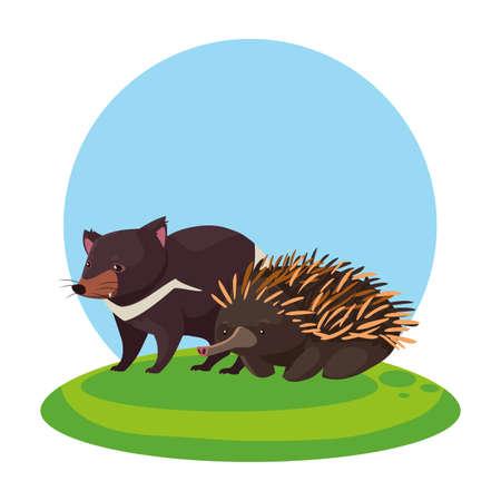 tasmanian devil and echidna over landscape vector illustration design Illustration