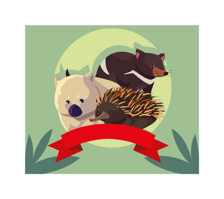 cute card with native animals of australia vector illustration design