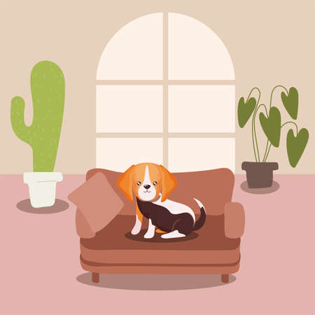 adorable dog in living room vector illustration design