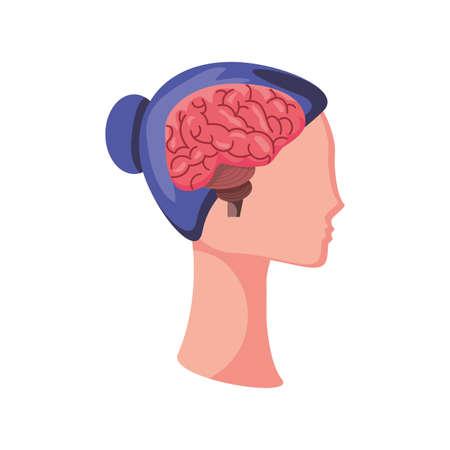 brain in human head on white background vector illustration design