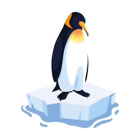 penguin on an ice floe drifting vector illustration design