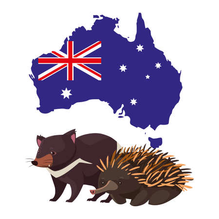 tasmanian devil and echidna with map of australia in the background vector illustration design