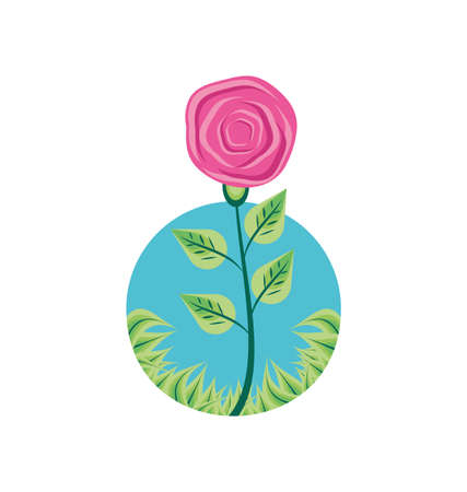flower nature with branch and leafs in frame circular vector illustration design