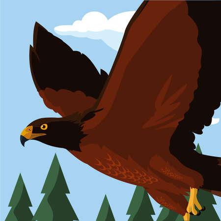 beautiful eagle flying in the landscape majestic bird vector illustration design Çizim