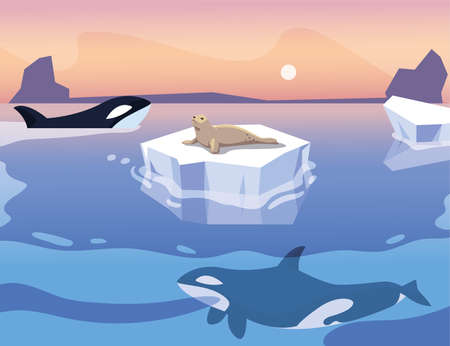 killer whale with iceberg floating in in the sea vector illustration design  イラスト・ベクター素材