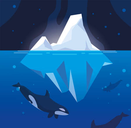 killer whale whit iceberg floating in in the sea vector illustration design  イラスト・ベクター素材