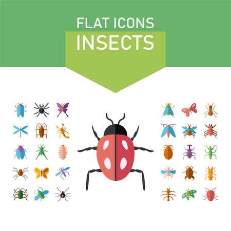 ladybug and insect icon set over white background, flat style, vector illustration