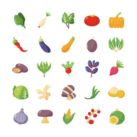 colorful vegetables icon set over white background, flat detail style, vector illustration Ilustracja