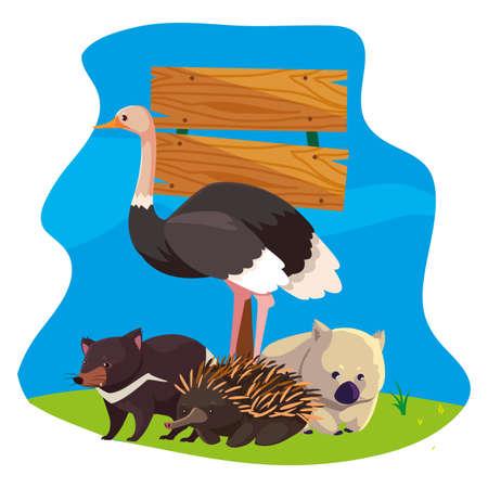 animals of australia over landscape vector illustration design Illustration