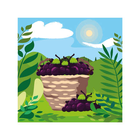 grapes with branch in wicker basket on background landscape vector illustration design Ilustração