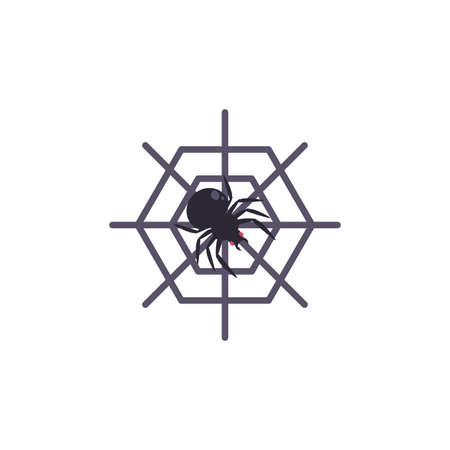 spider web with spider on white background vector illustration design