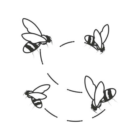 bees insects flying isolated icon vector illustration design Illustration