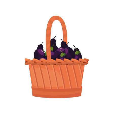 fresh vegetable eggplant in wicker basket vector illustration Vetores