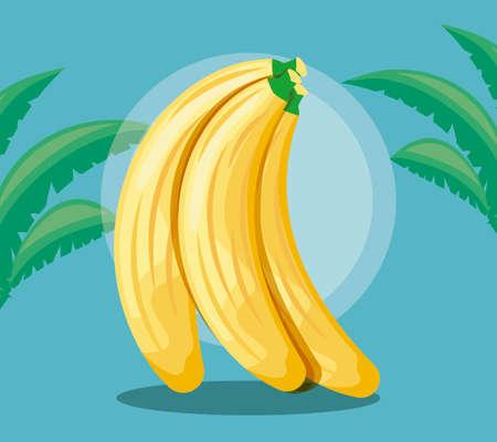 summer poster with set of bananas and leafs vector illustration design Vektorgrafik
