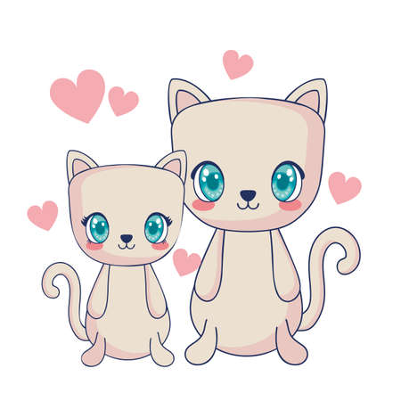 cute cats couple characters vector illustration design