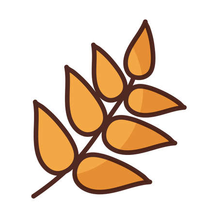 wheat leaves on white background vector illustration design 向量圖像