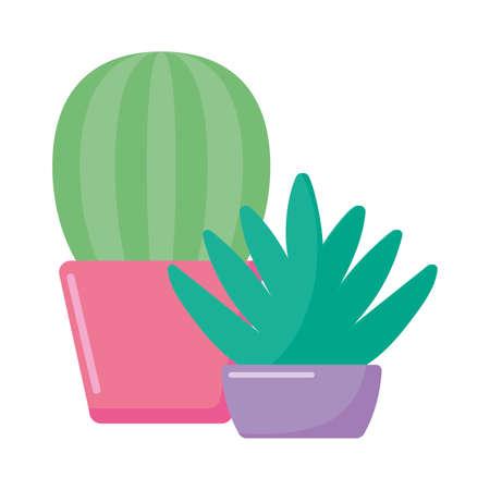 Cactus plants inside pots design, Desert nature art tropical summer succulent mexico and cacti theme Vector illustration Ilustración de vector