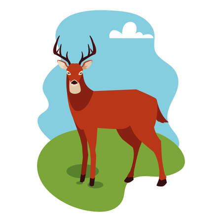 wild deer on a summer nature landscape vector illustration design