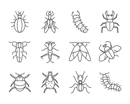 icon set of insects concept over white background, line detail style, vector illustration
