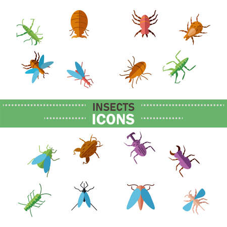 colorful insect icon set over white background, line detail style, vector illustration
