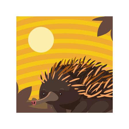 card with echidna in australian landscape vector illustration design