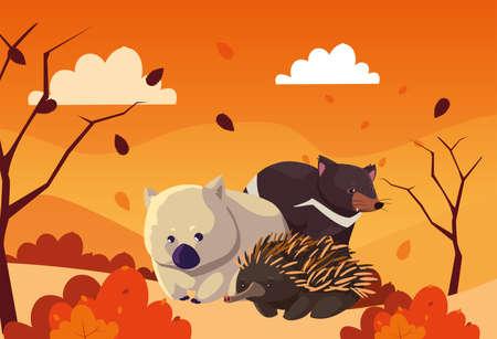 cute card with animals of australia vector illustration design