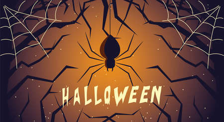 halloween card with spider in the dark night vector illustration design