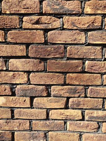 Brick wall under sunlight. Texture