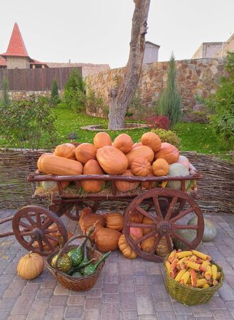 Autumn, the harvest. Cart with pumpkins, and other vegetables in baskets