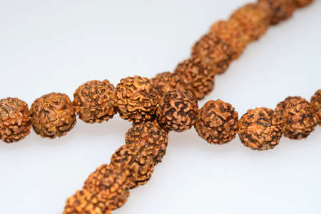 seed beads: Japa mala  prayer beads  made of rudraksha isolated