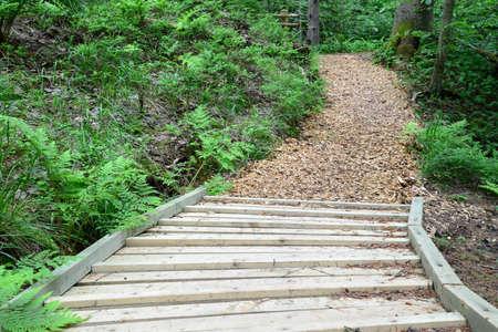 sigulda: Camino de madera en el bosque Sigulda Foto de archivo