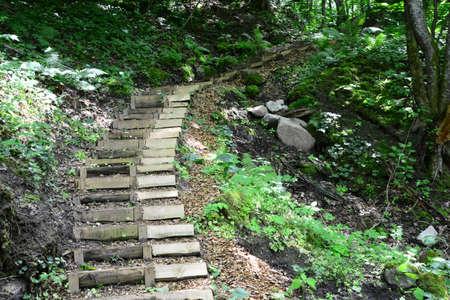 sigulda: Escaleras de madera en el bosque Sigulda