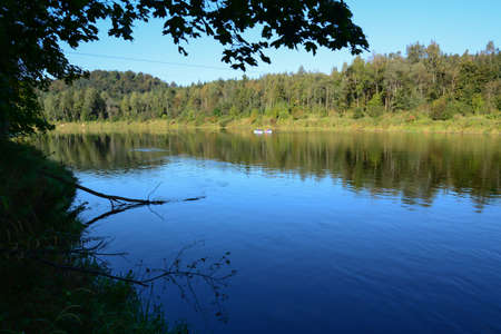 gauja: river and trees